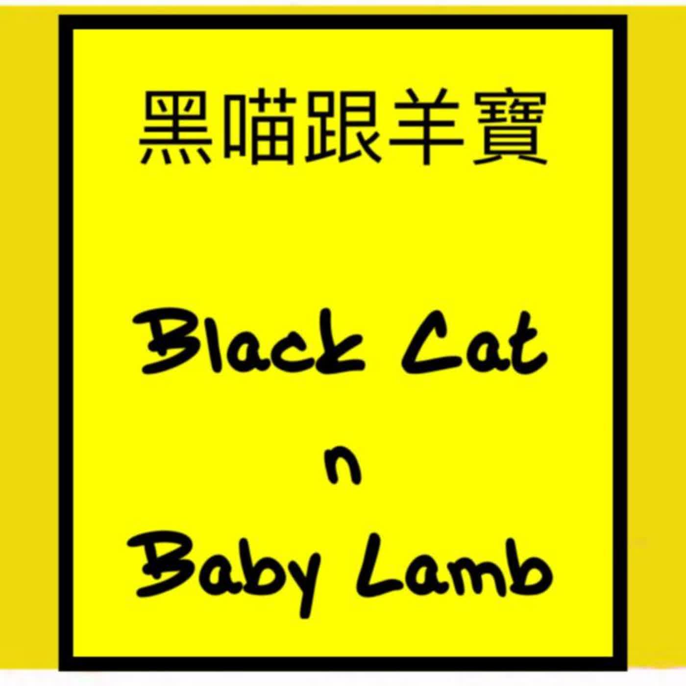 黑喵與羊寶 Black Cat n Baby Lamb