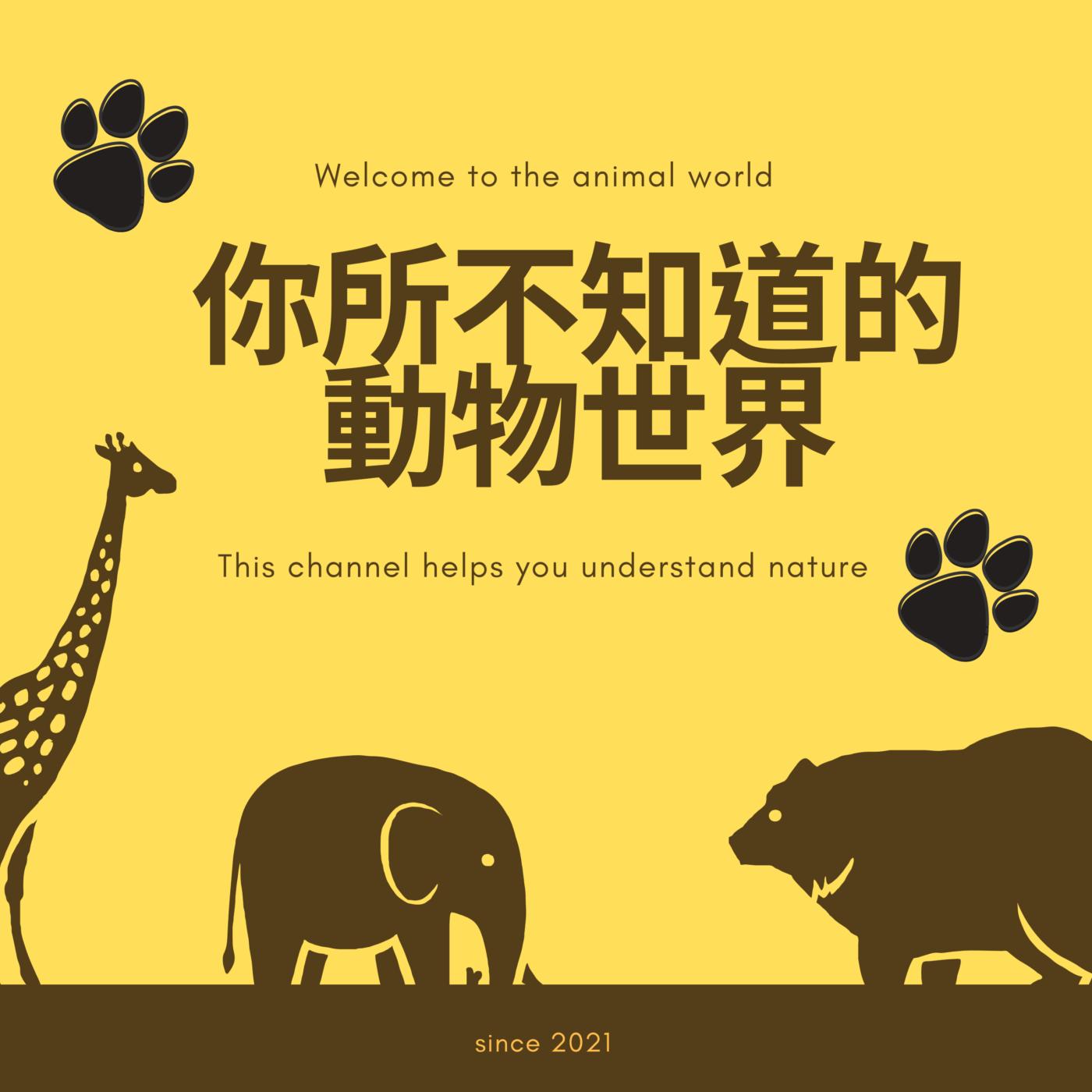 你所不知道的動物世界