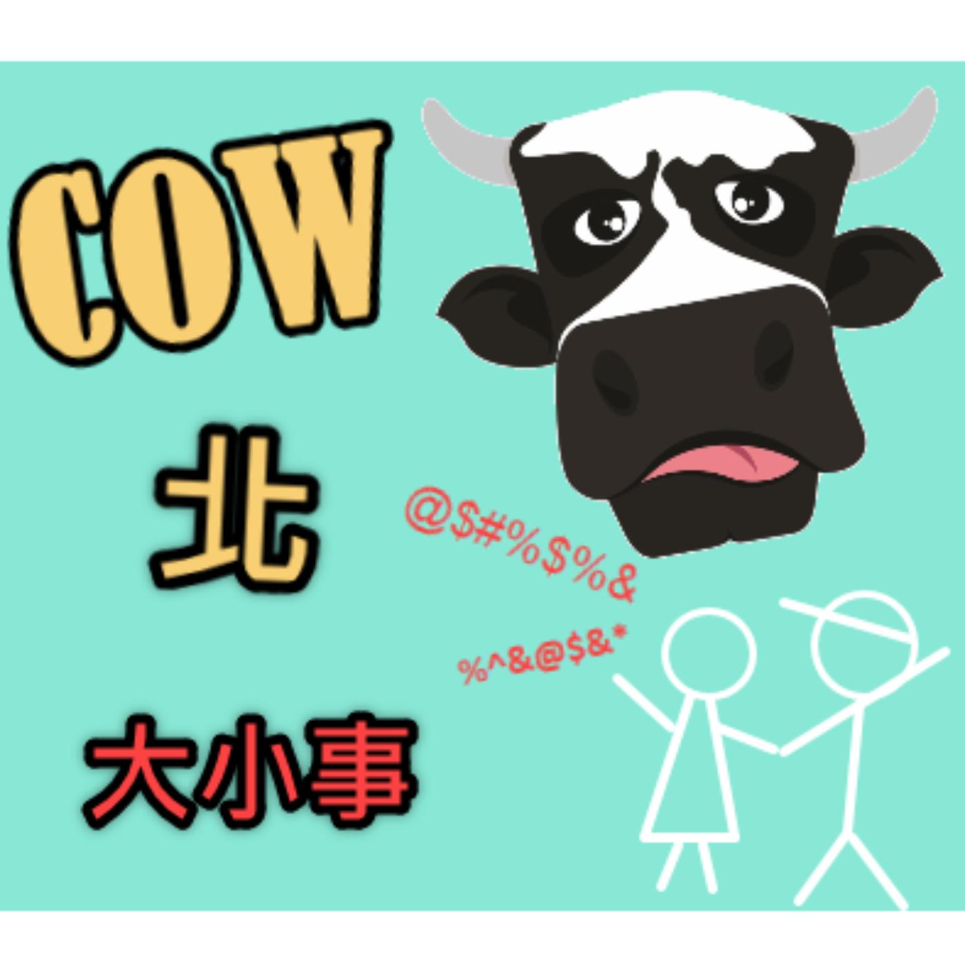 COW北大小事