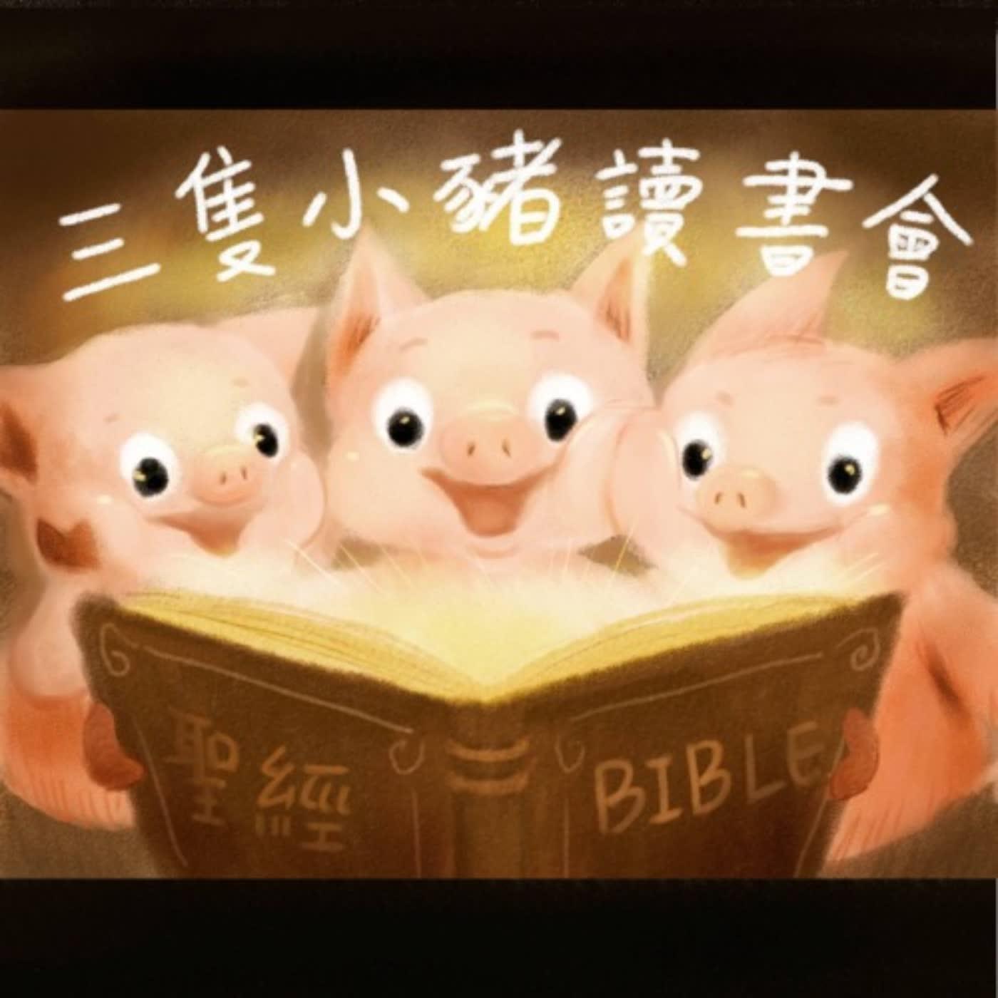 EP8|如何讀聖經