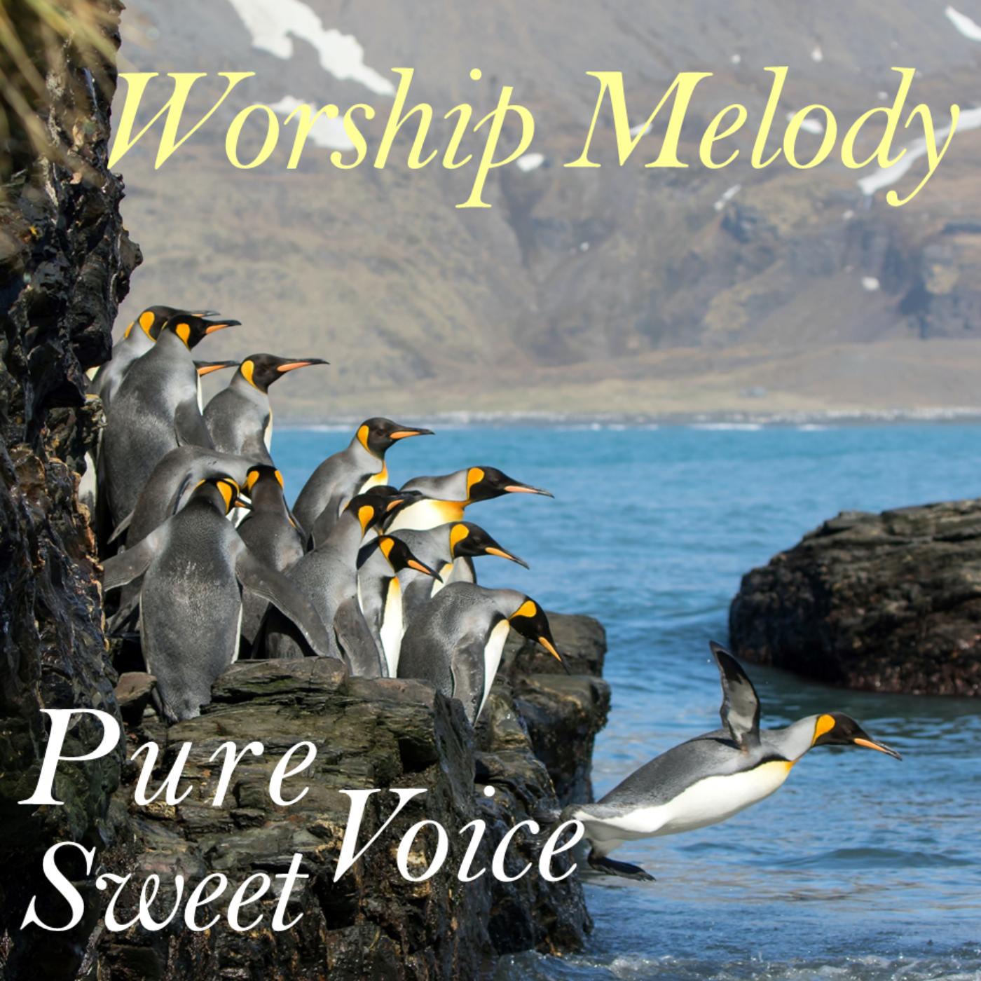 Psalm 61~70 + Way Maker Piano Worship