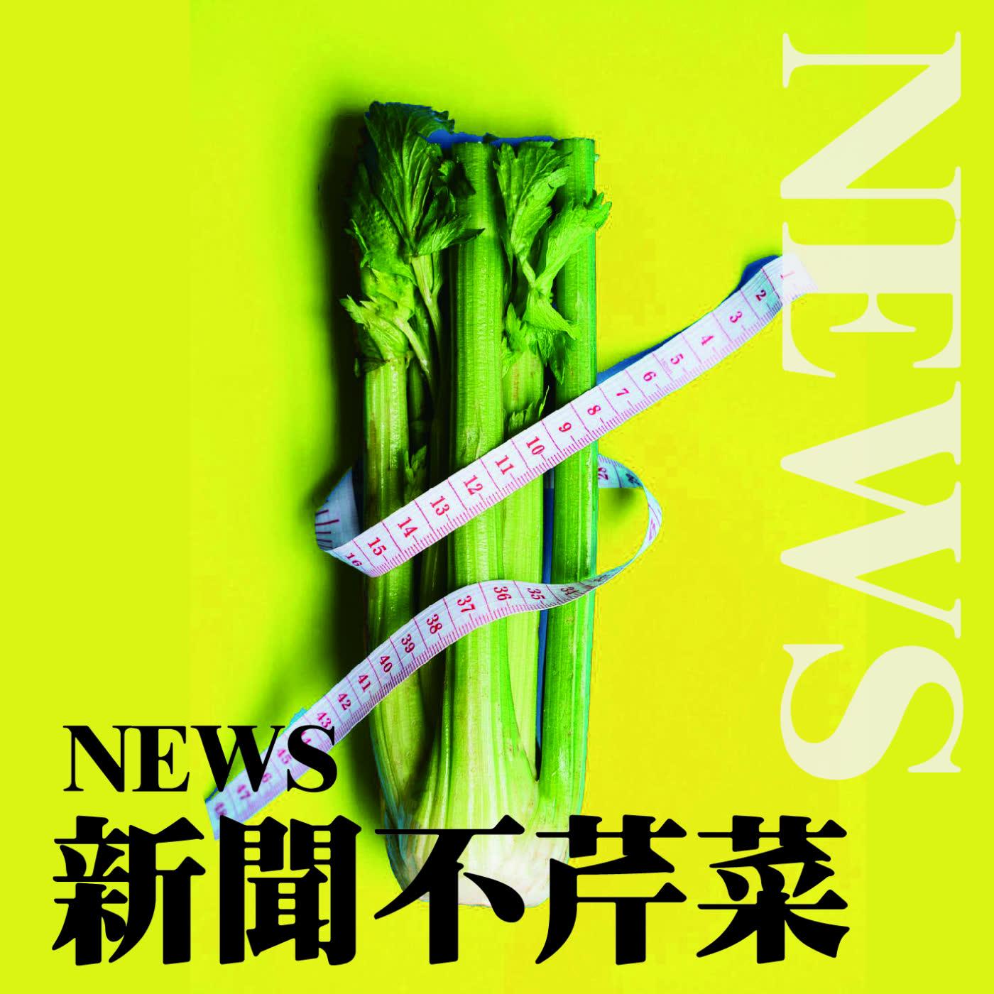 【震傳媒|新聞不芹菜】EP35 |楊文科打什麼如意算盤?
