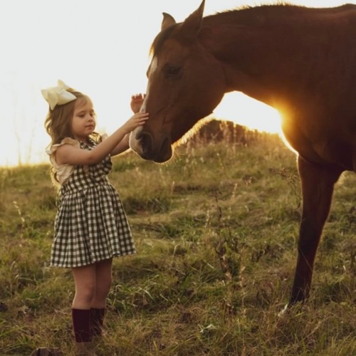 女孩🌹也可以以 照顧者、溫柔的特質為榮/魔戒心得