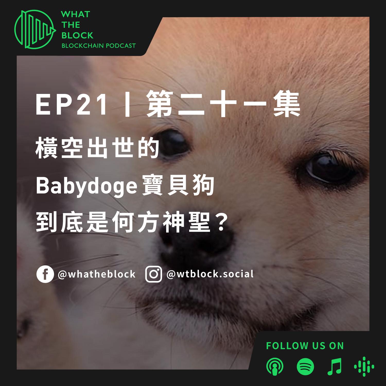 EP21|橫空出世的 Babydoge 寶貝狗到底是何方神聖?