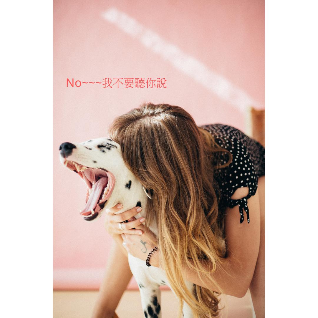 專題:行為X溝通--毛寶療癒家 feat. 溝通師Sonja EP10 《馬斯洛需求》系列(七):可以讓結紮更溫柔的事
