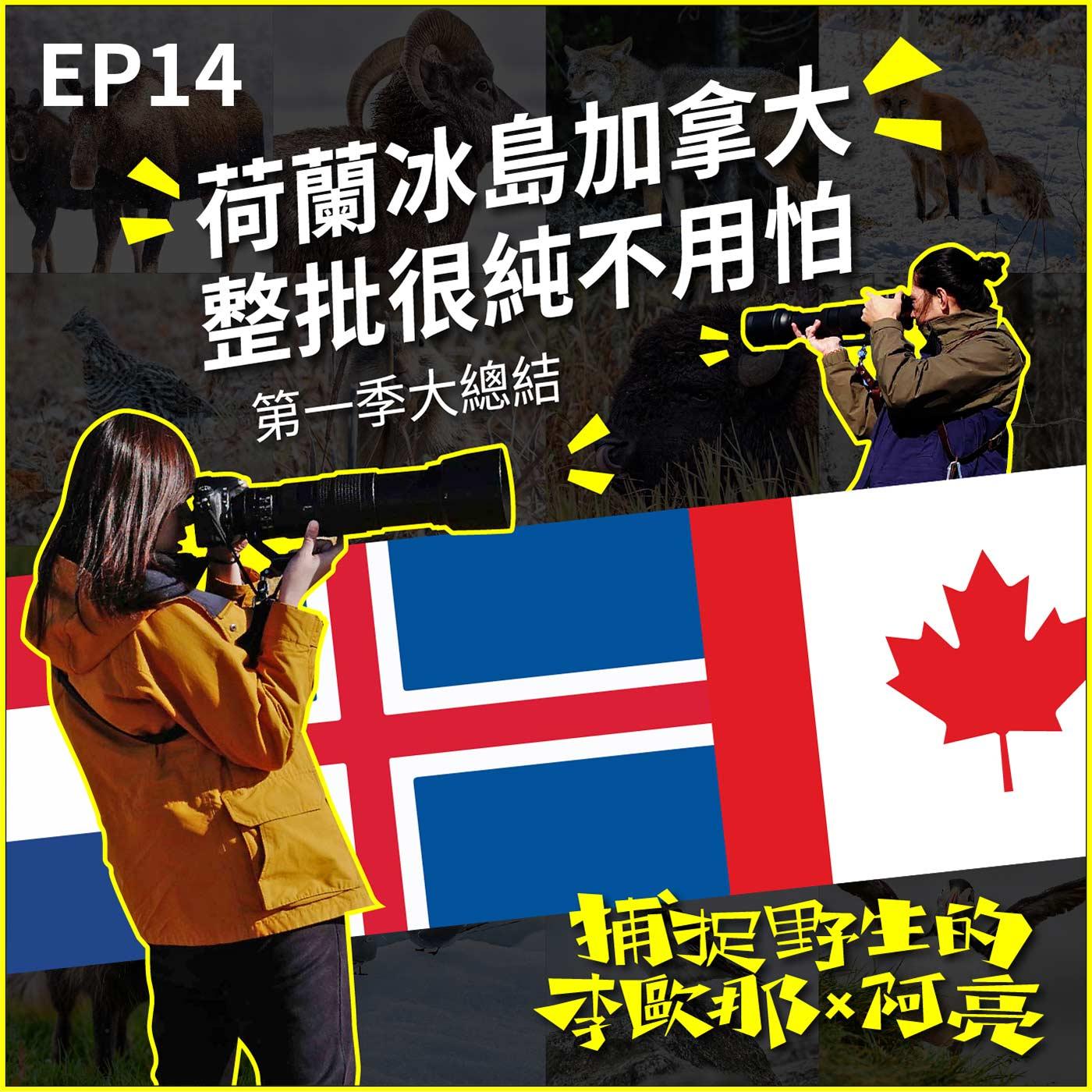 EP.14  荷蘭冰島加拿大 整批很純不用怕 第一季大總結
