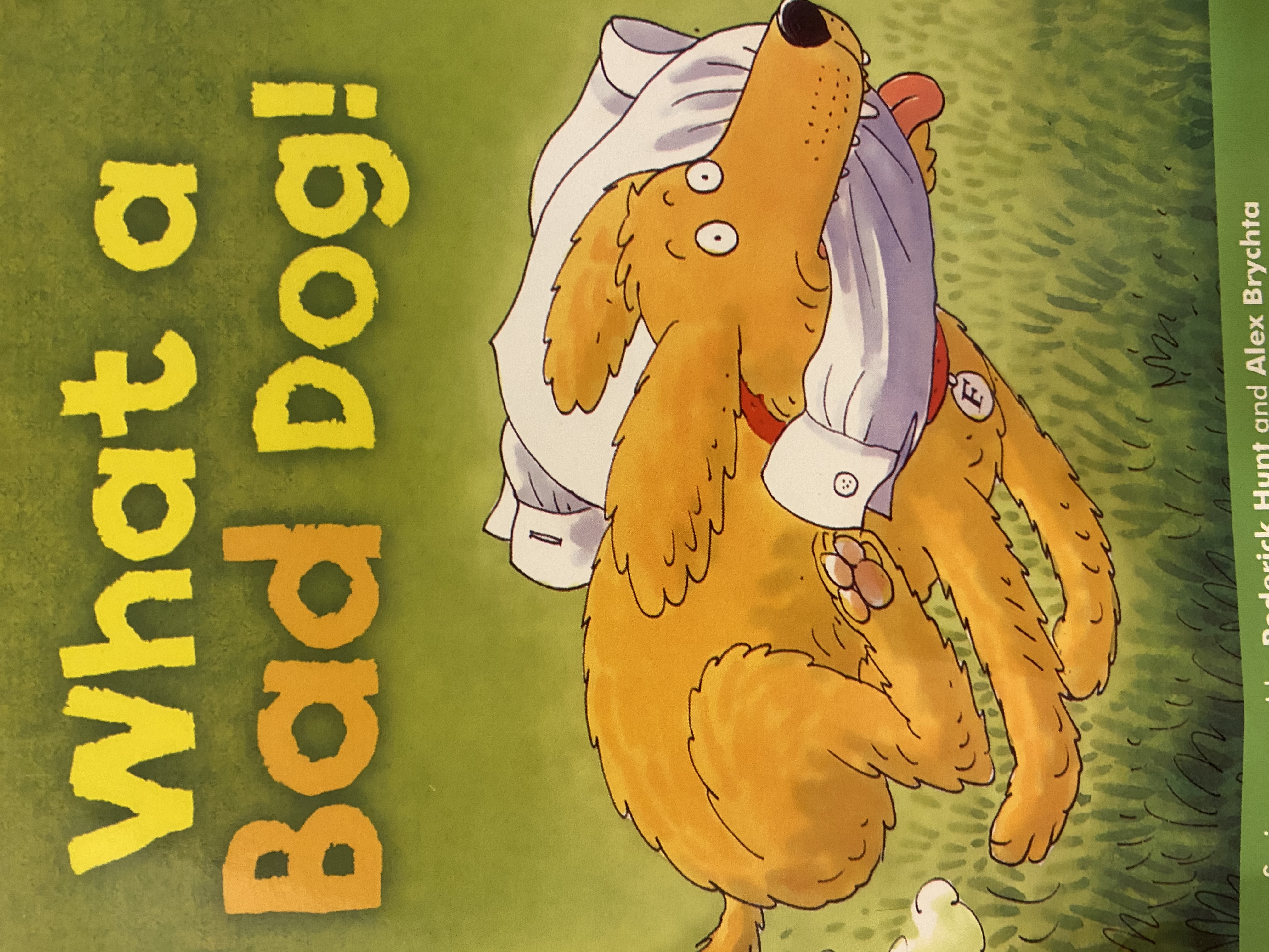 S2-003/ What a bad dog/ Oxford reading tree