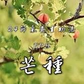[二十四節氣養生功法]EP.9 梅雨季節到啦,芒種。是不是該種芒果了呢?