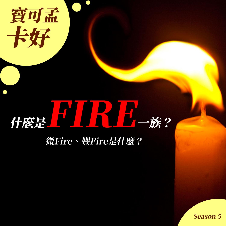【財務自由】什麼是FIRE一族?「微FIRE」跟「豐FIRE」一族又是什麼?今天來跟你聊聊「財務自由」S5EP01