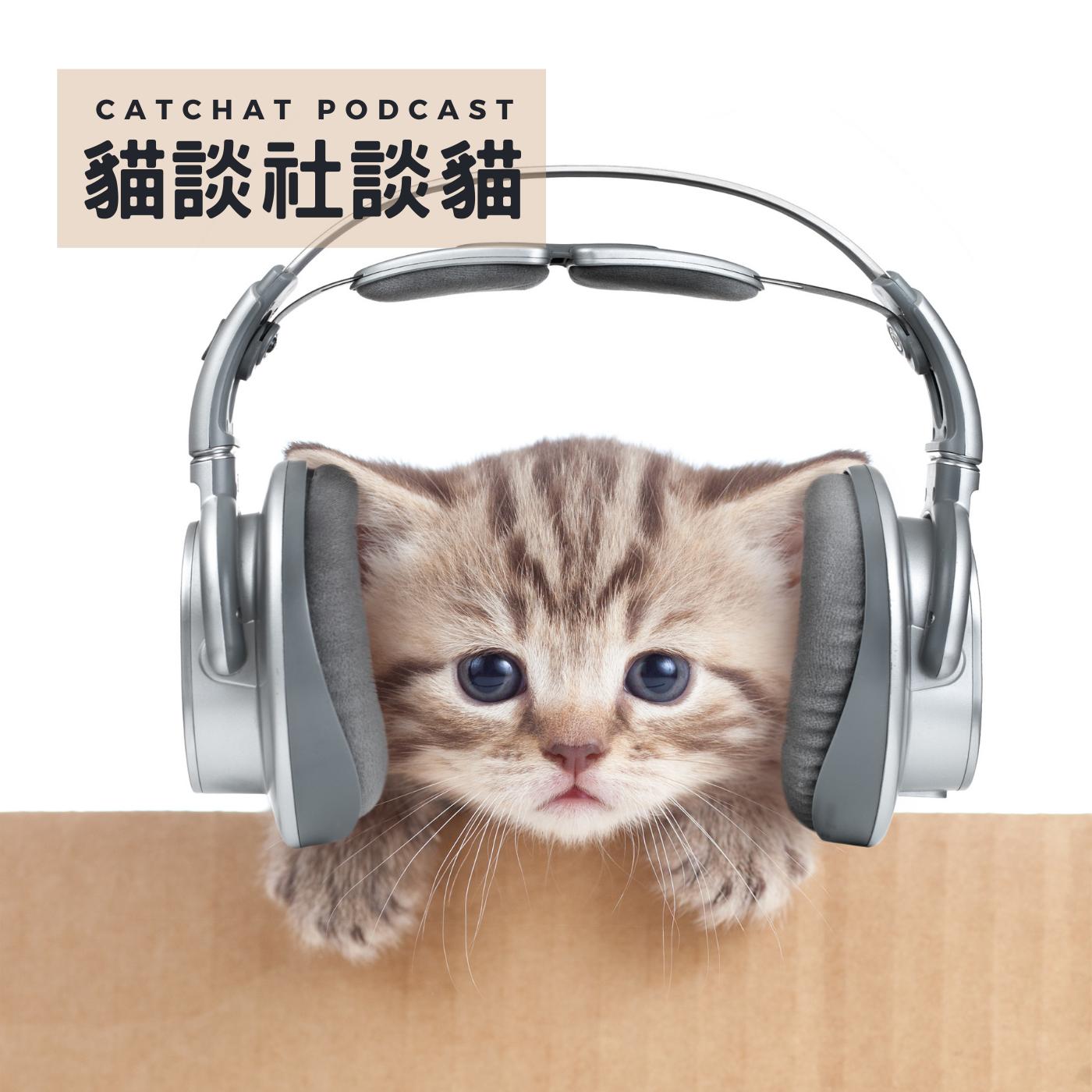EP08! 貓咪確實是有表情的,只是人類很不會看而已?!