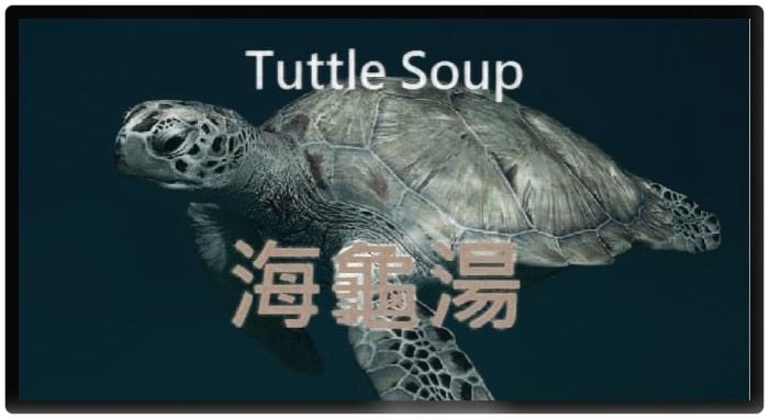 B8地下八層 / 懸疑推理遊戲~海龜湯~