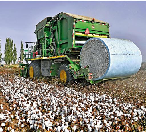 EP.63|「新疆棉人權風波」事實的真相是血汗棉花?還是中美經濟戰 【Xinjiang Cotton】by就醬說just say