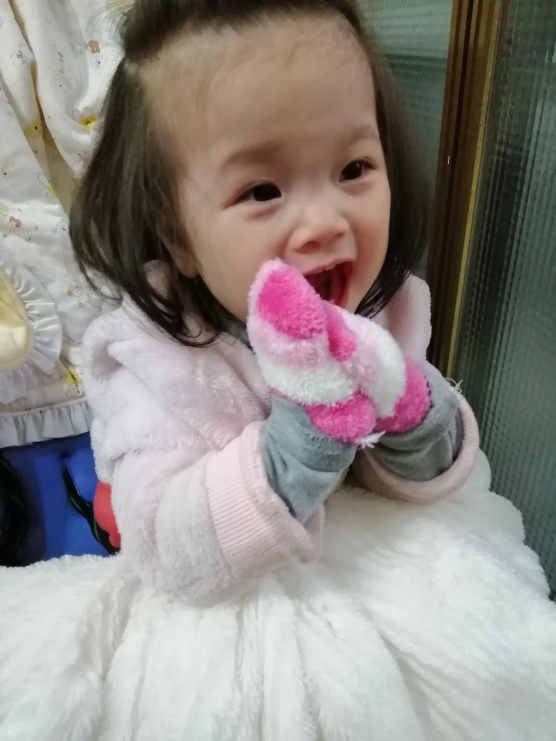 旅喵寶貝 喵掌戴著迷你手套,萌翻了!