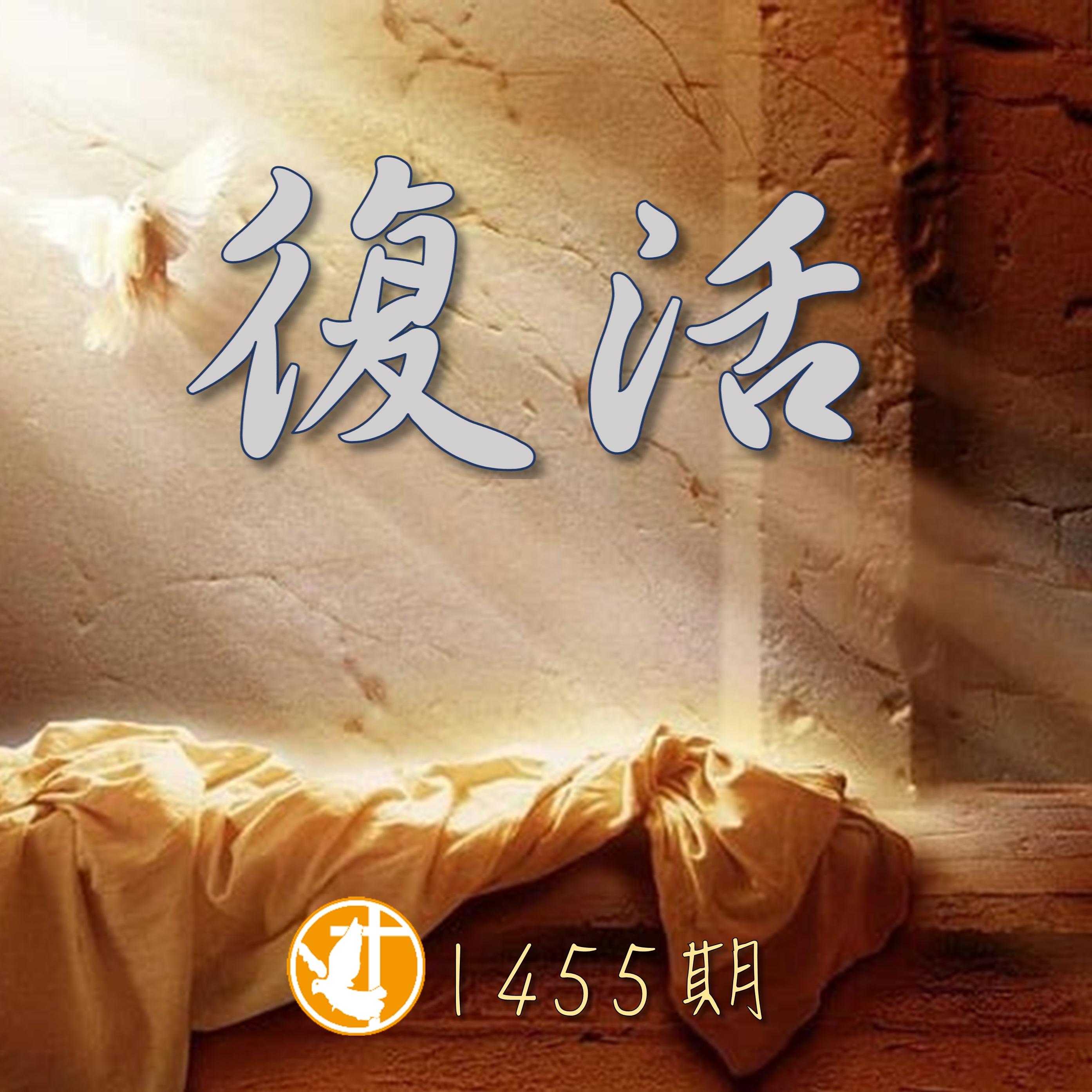 1455期 復活~一件奧秘的事
