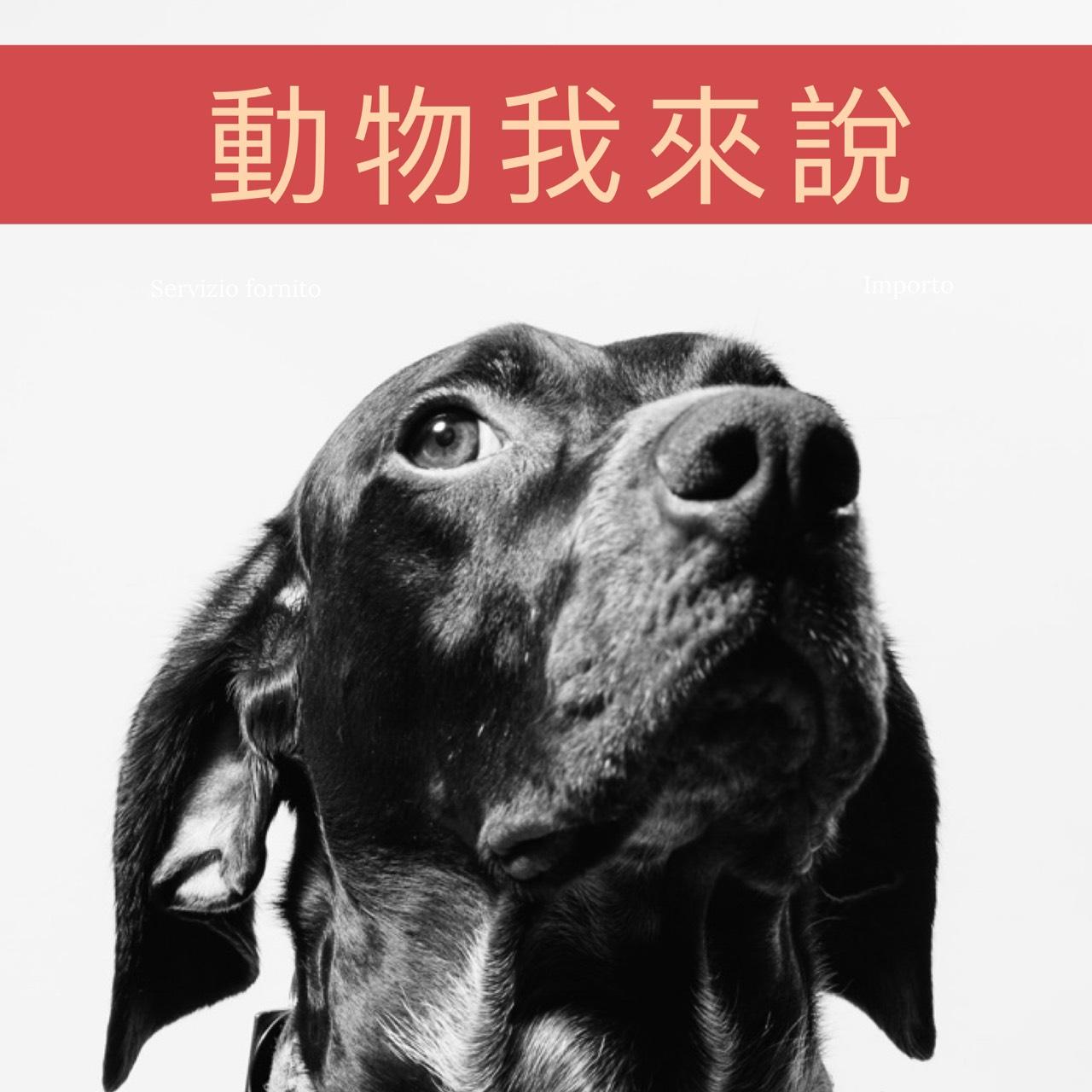 Ep21—動物我來說系列《人人想當寵物美容師,背後辛酸誰人知FEAT.酉家寵物旅館Weny老闆娘》