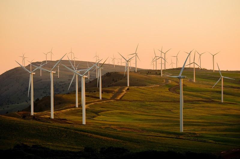 #30【台電543】台灣大缺電!為什麼是我們停電? 綠能真的適合台灣嗎?  __Ft.台電阿伯