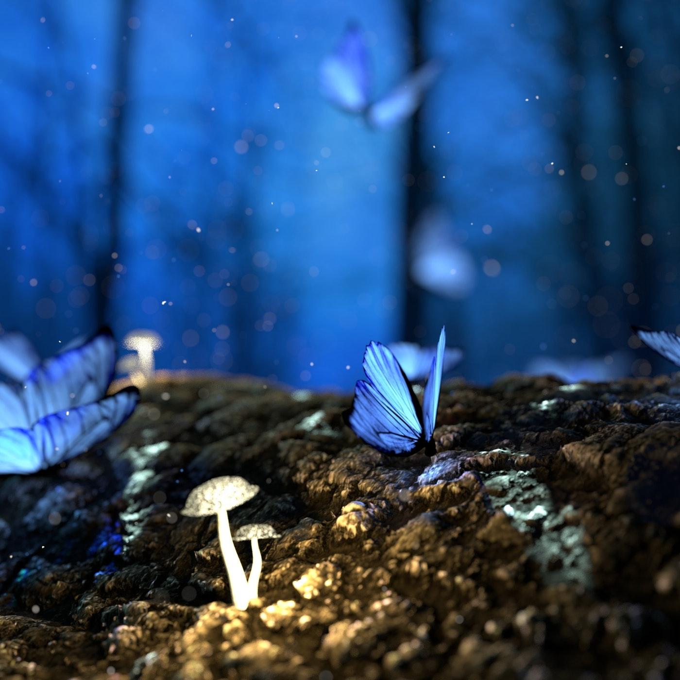 【2021放鬆森林系鋼琴音樂】令人放鬆的森林系鋼琴音樂,讓您彷彿在森林中與精靈們共舞。
