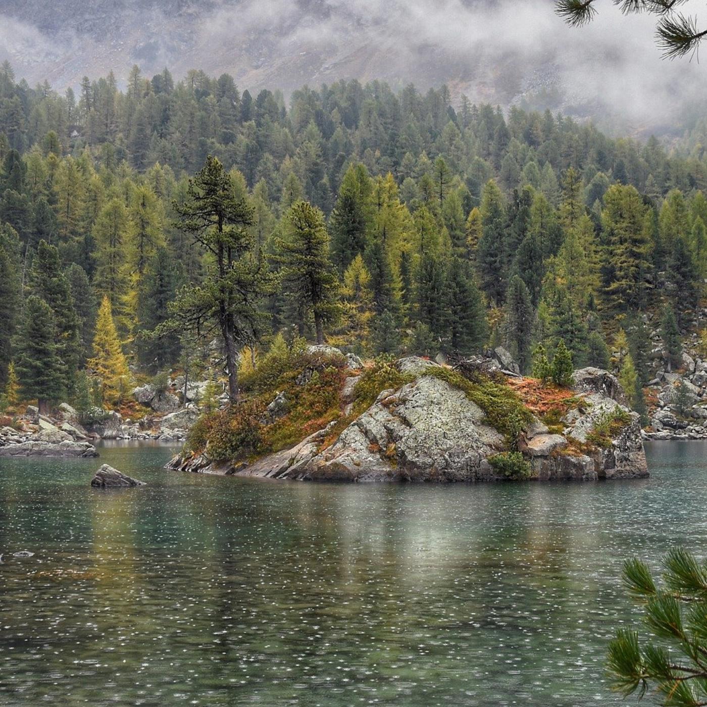 【湖畔細雨聲】鋼琴伴著雨聲的平靜與安寧   幫助自律神經放鬆
