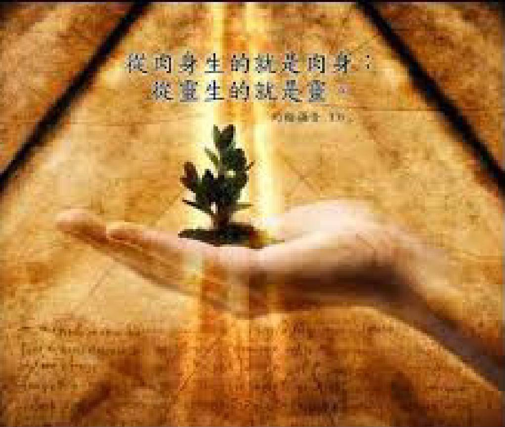 2月22日約翰福音三章4~8節