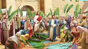 5月29日約翰福音十二章12~15節