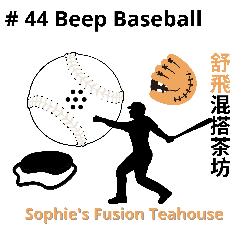#44_Beep Baseball眼盲心/力不盲,明與盲的團隊運動-盲人棒球