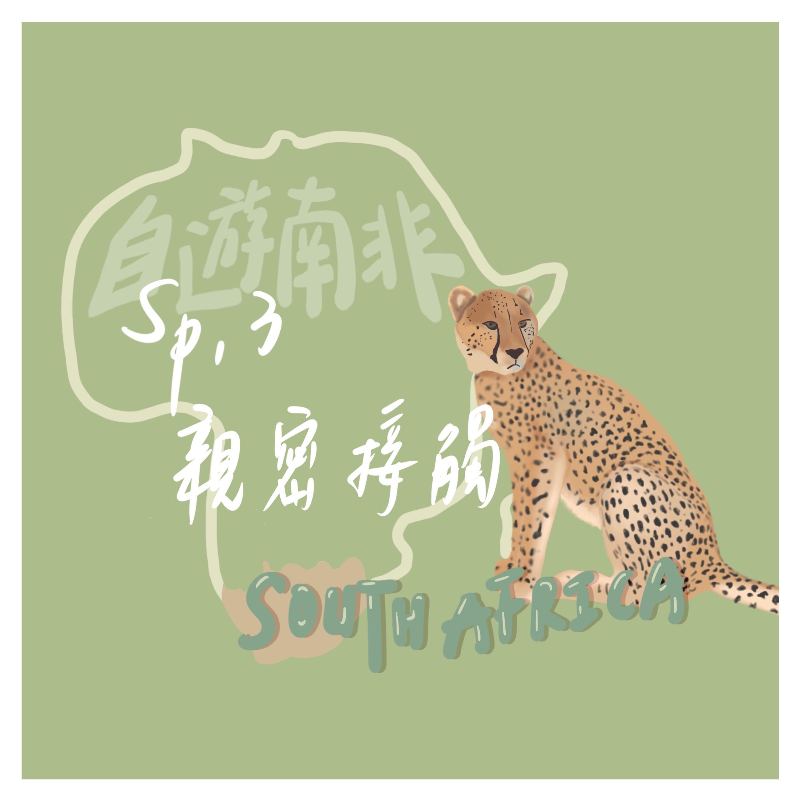 【自遊南非】Sp.3 獵豹的親密接觸,喝奶酒救大象!