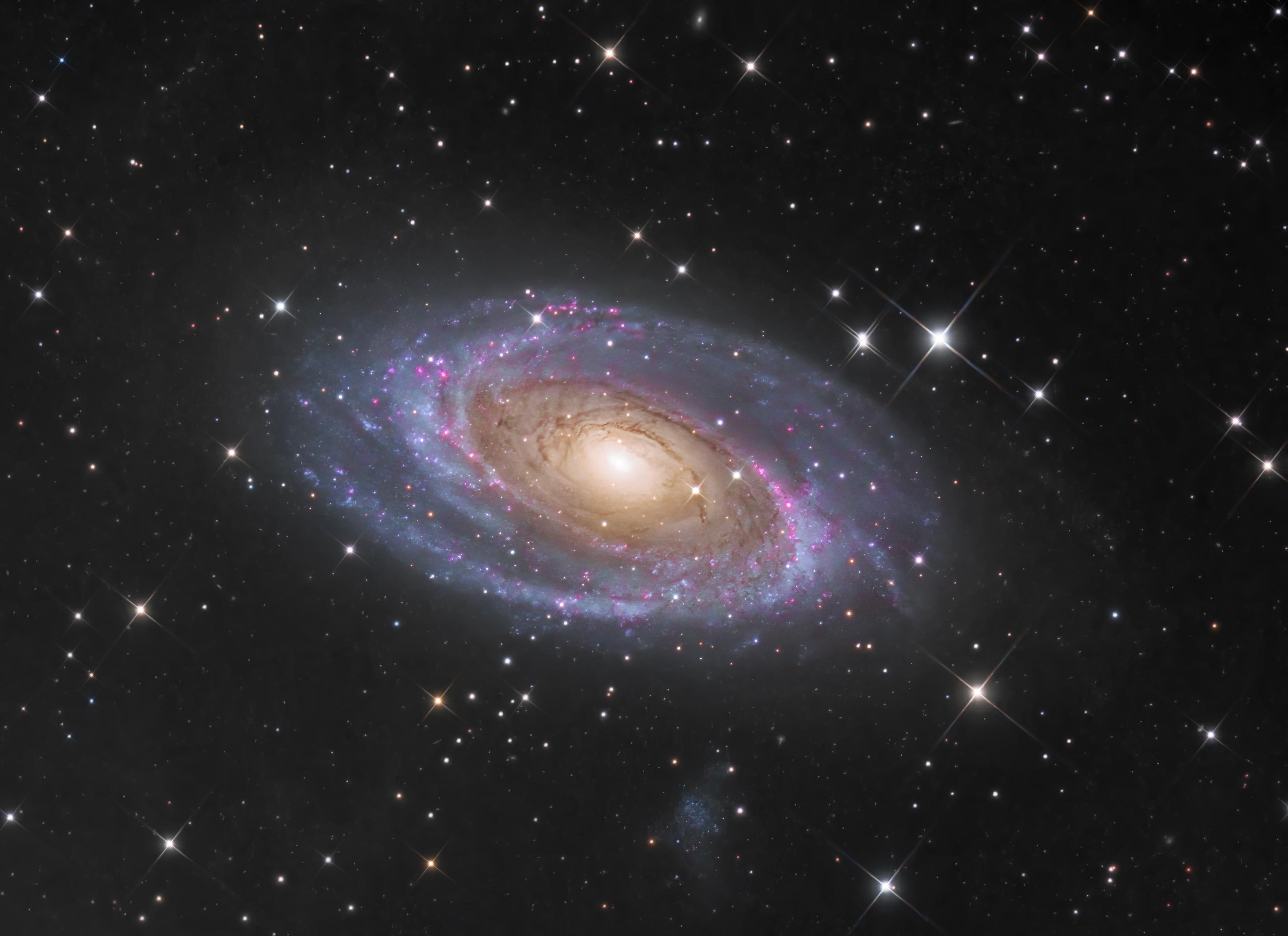 Messier 81 ft. 彪彪 (20210312)