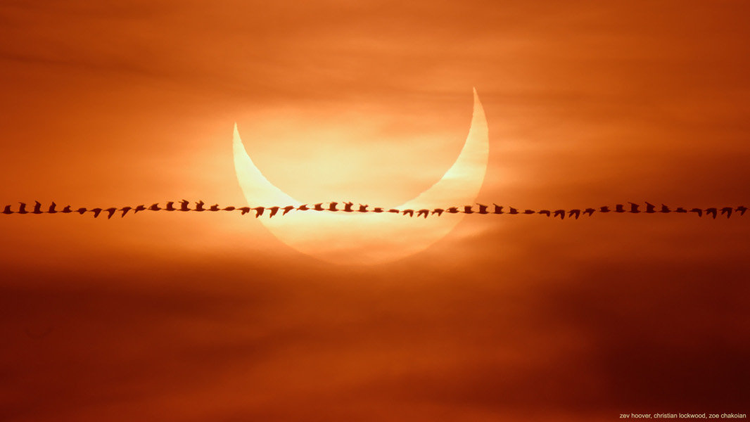 飛過日食 ft. 阿錕 (20210611)