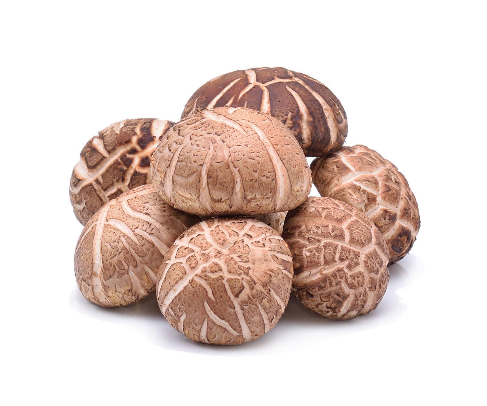 香菇--「一味求快,生產快,進食快,常常吃什麼就缺乏什麼味道...」