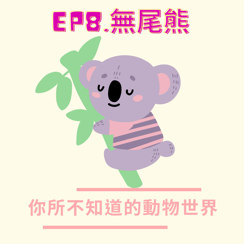 EP.8 無尾食客-無尾熊