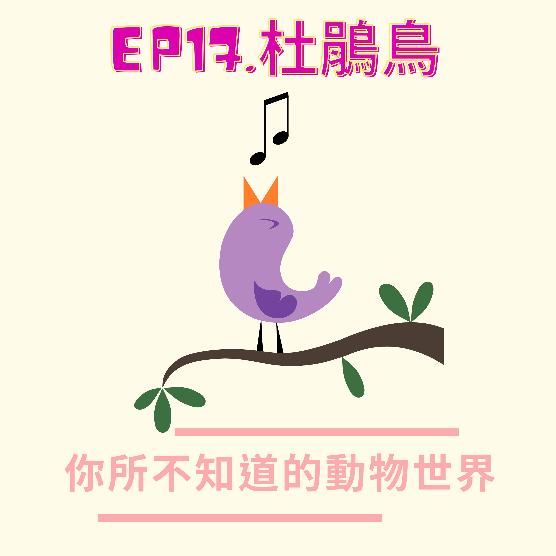 EP.17 心狠手辣-杜鵑鳥