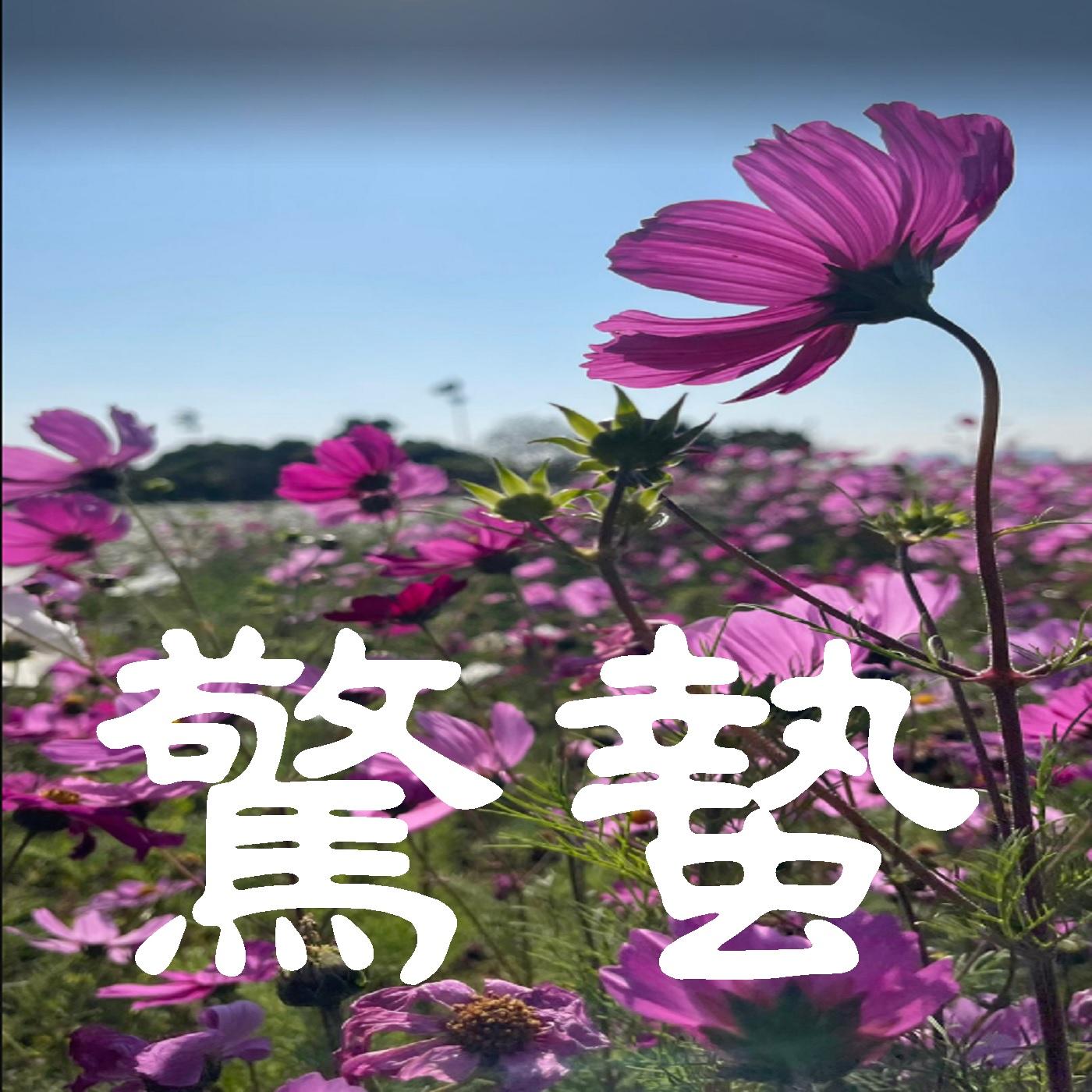 "【EP14】話說大家的""驚蟄""都是怎麼過的?!"