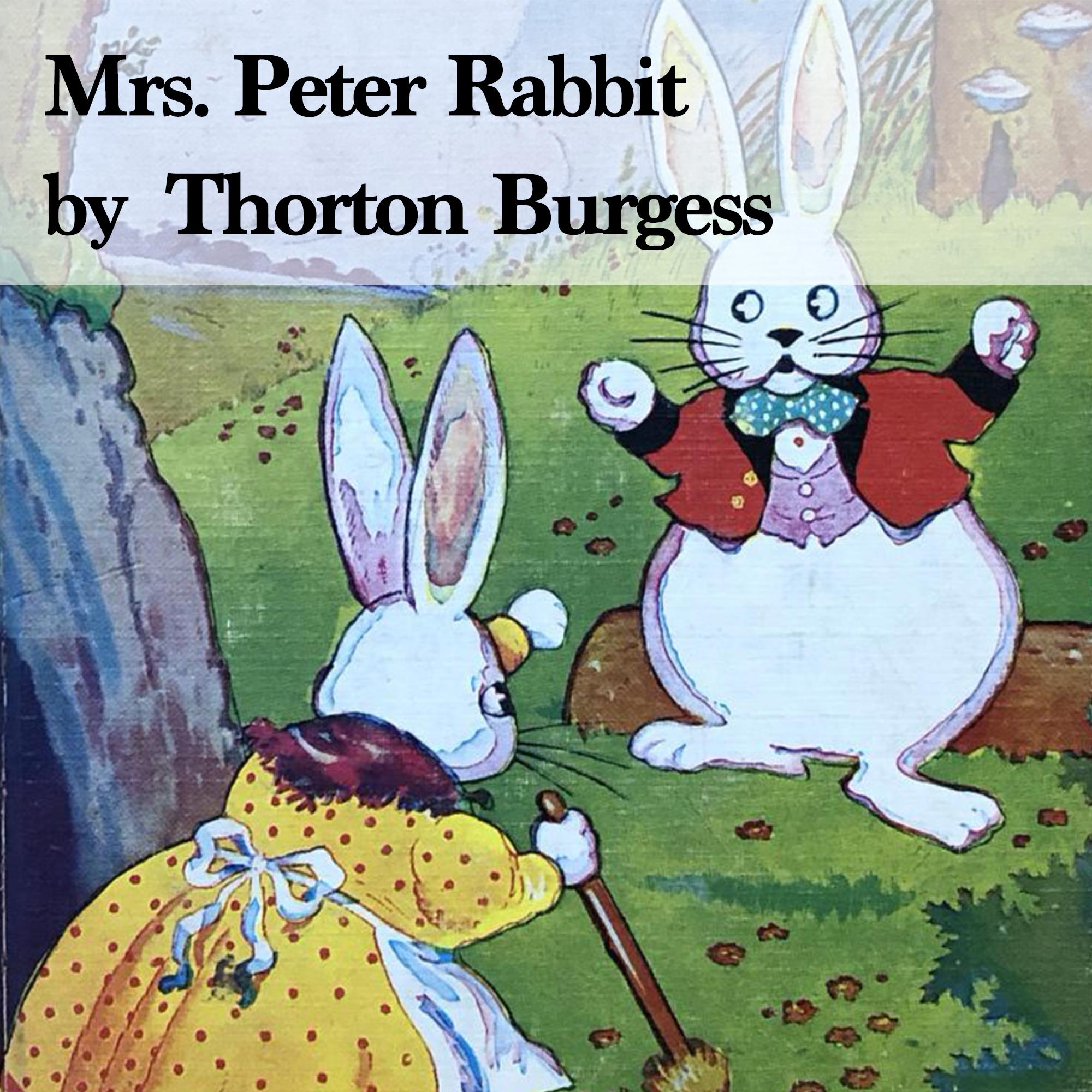 故事朗讀#008:Mrs. Peter Rabbit 第2章  Peter Plans a Journey
