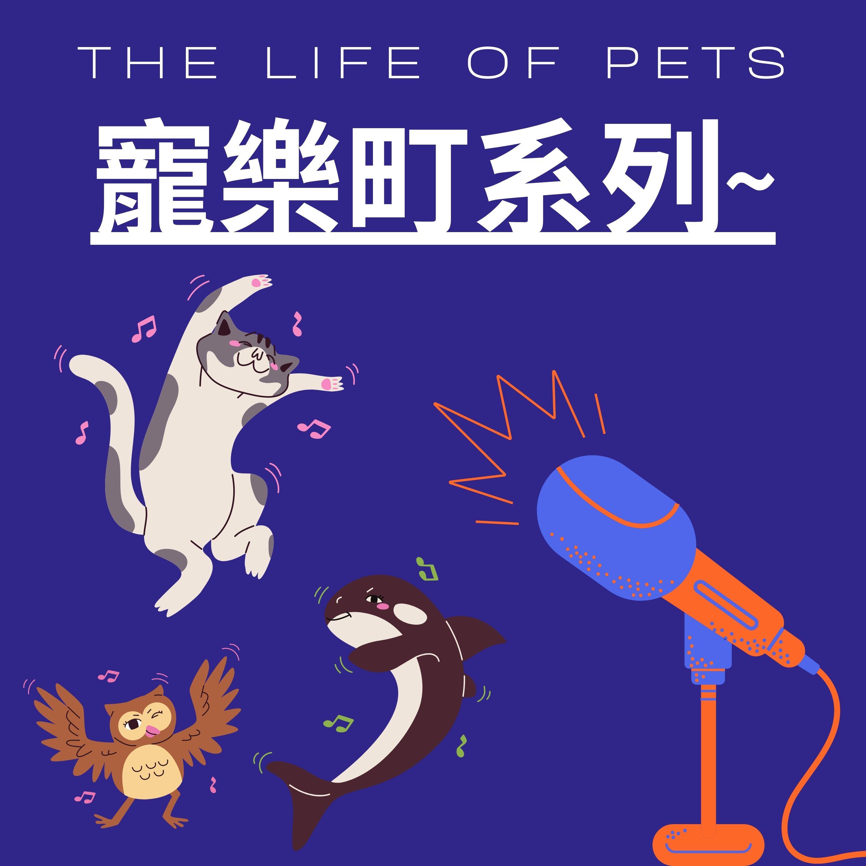 寵樂町系列-你願意接收動物的貢獻而不去控制牠嗎