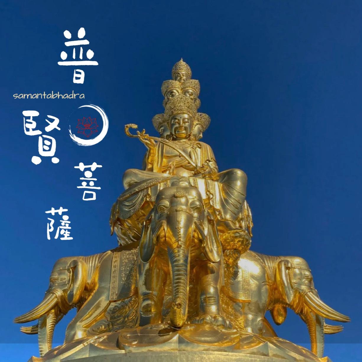 第六期-普賢菩薩、金剛薩埵、金剛手菩薩(一)