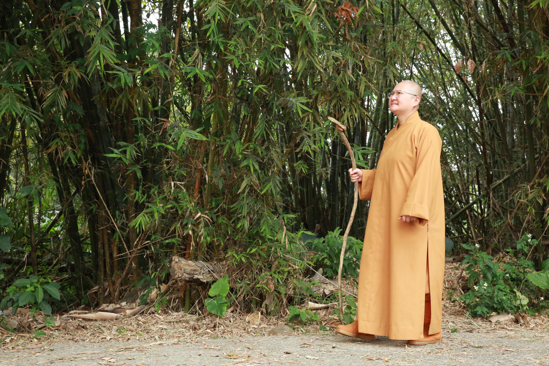 「修行菩薩所遇12種魔障」《海慧菩薩所說經》台灣(6-3)