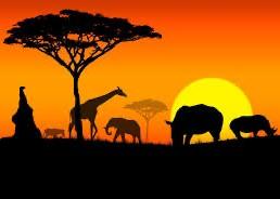 第19(上)集 如何開拓充滿貿易投資機會的非洲大陸?