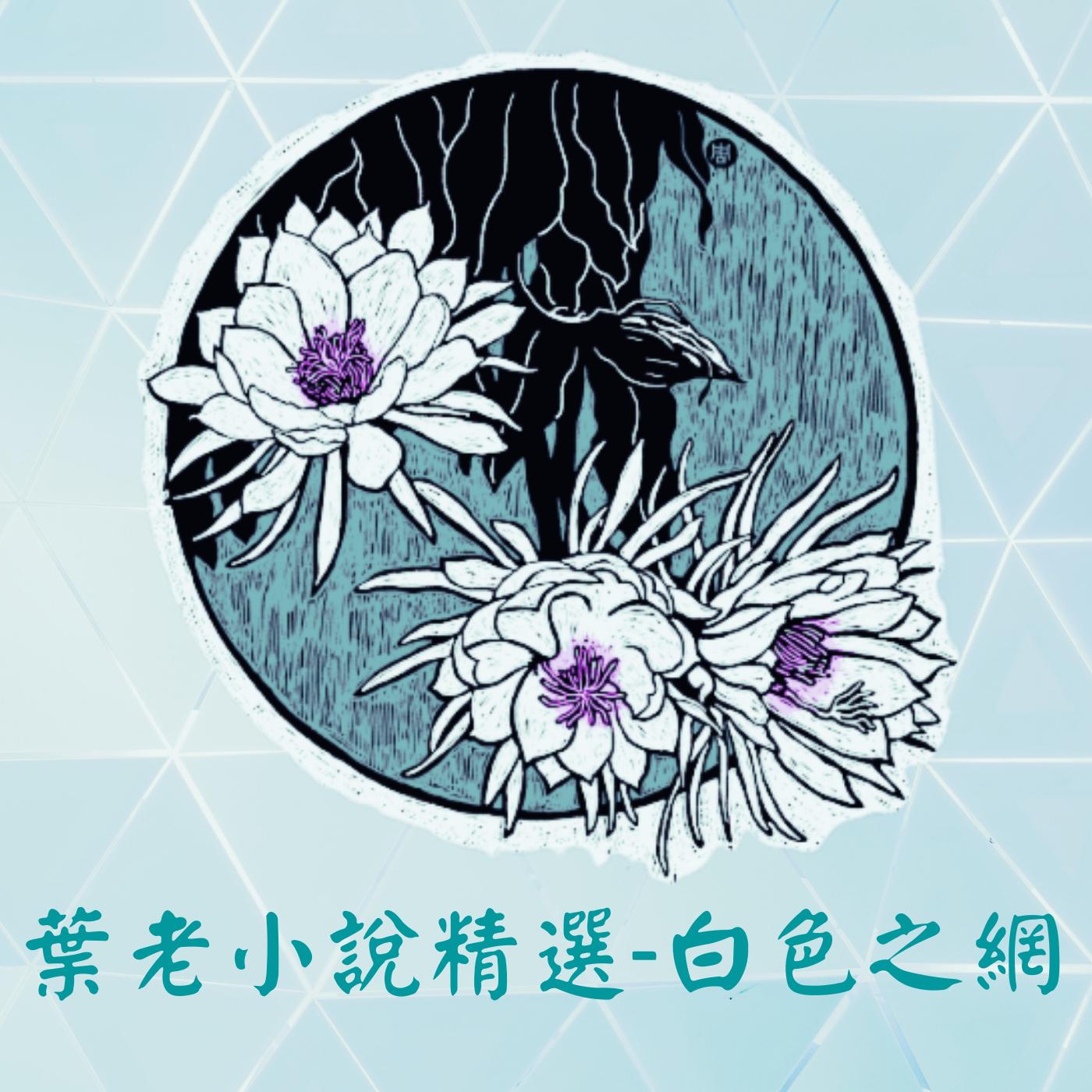 葉老小說精選-白色之網EP.4牆