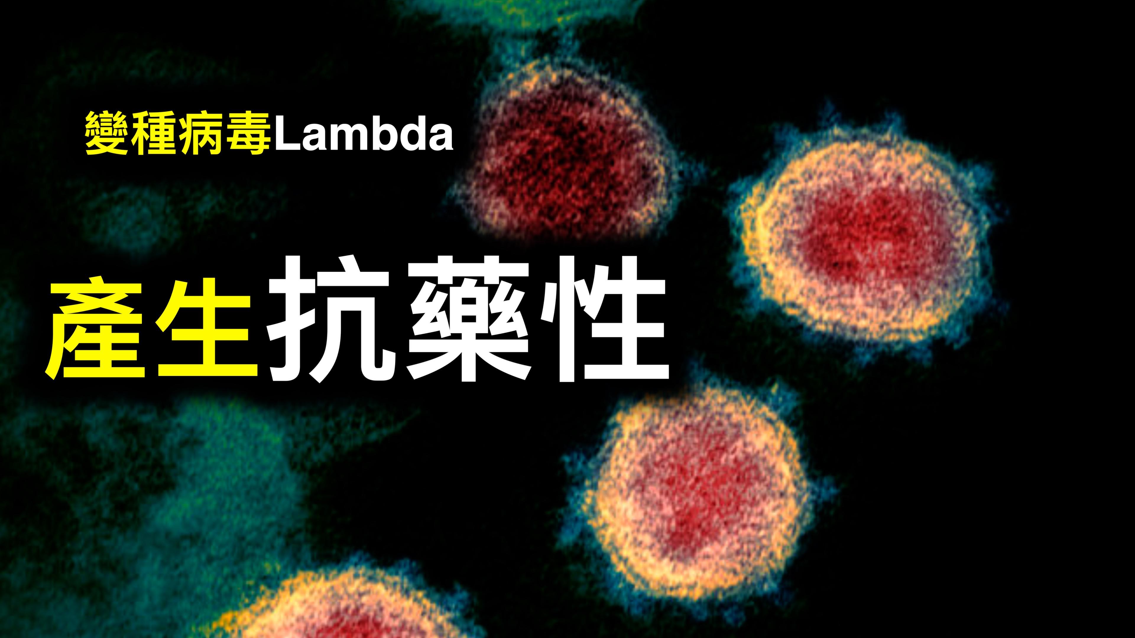 新加坡公布疫苗国家赔偿;Lambda變種可能產生抗藥性;以色列已接種學生1傳83令人擔憂⋯⋯